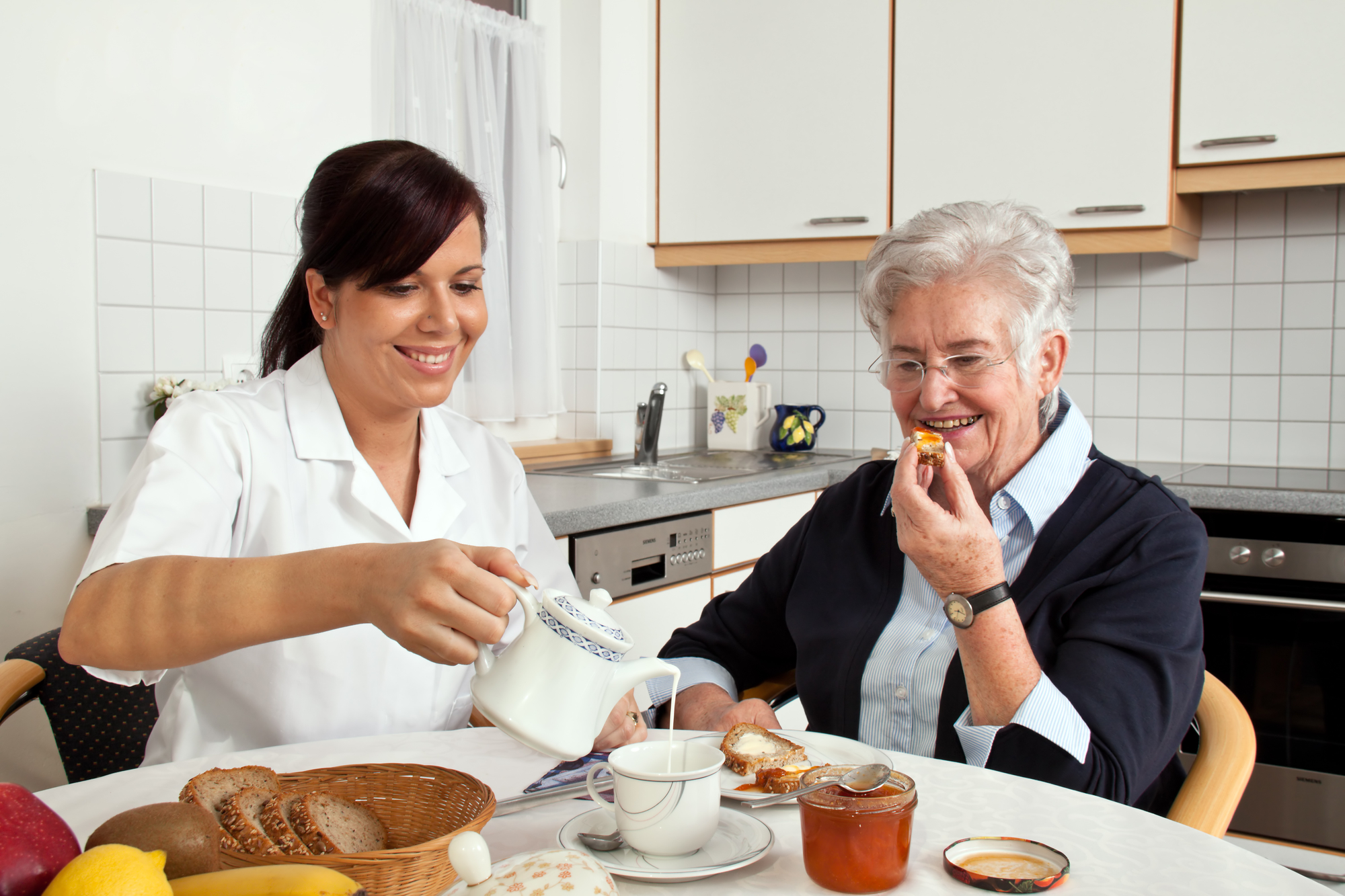 Homemaker Service and Homemaker Companionship Service in Florida